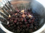 the beginning of blackberry syrup