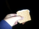 my first campfire s'mores