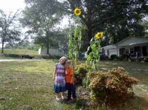 Sparkles and Middle Boy with their sunflowers