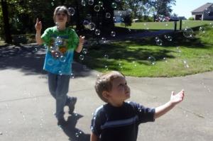 bubble investigations