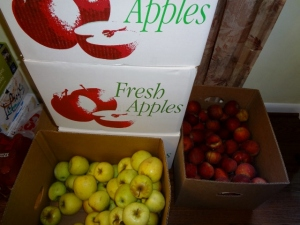 apples and more apples