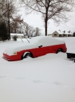 Mustang in snow