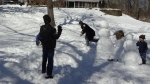 fiamily wide snowball fight
