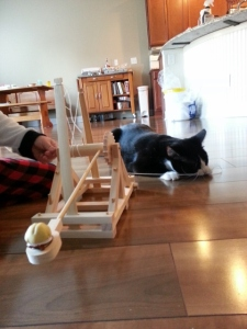 cats and catapults...